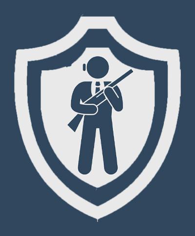 Вооруженная охрана