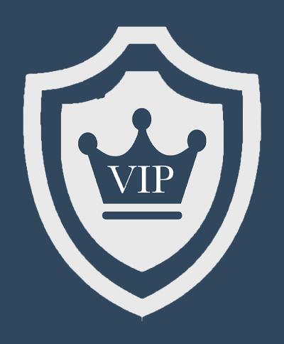 Сопровождение VIP-персон